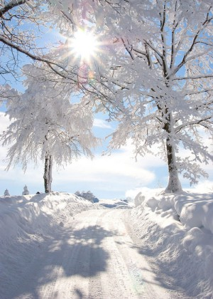 a beautiful winter's day