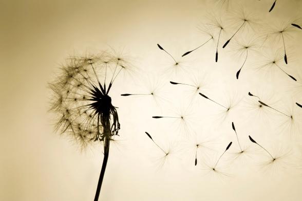 hope/inspirational/faith