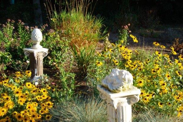 garden 2008 august