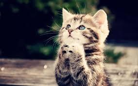 long time praying