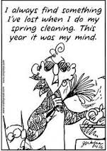 funny house cleaning