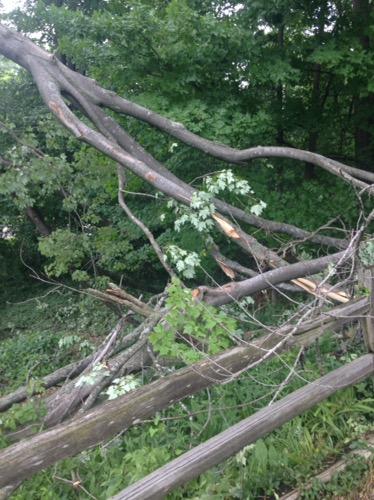 storm damage 2016