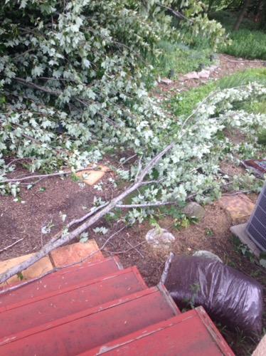 storm 2016