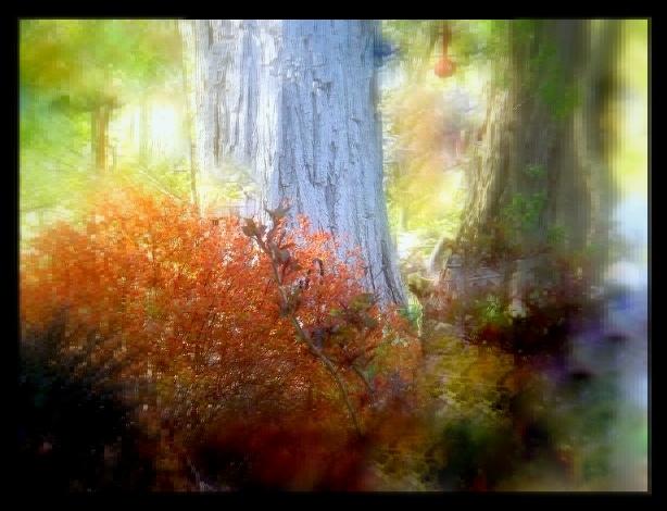 depression and autumn