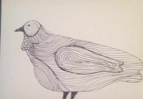 Michigan Peacock