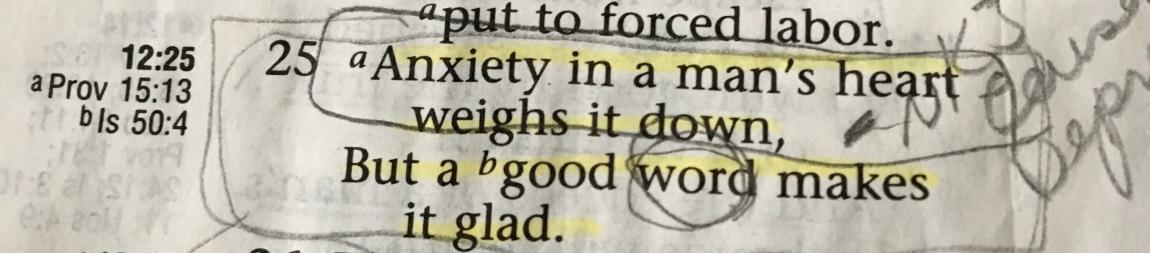 Proverbs 12:25/2017