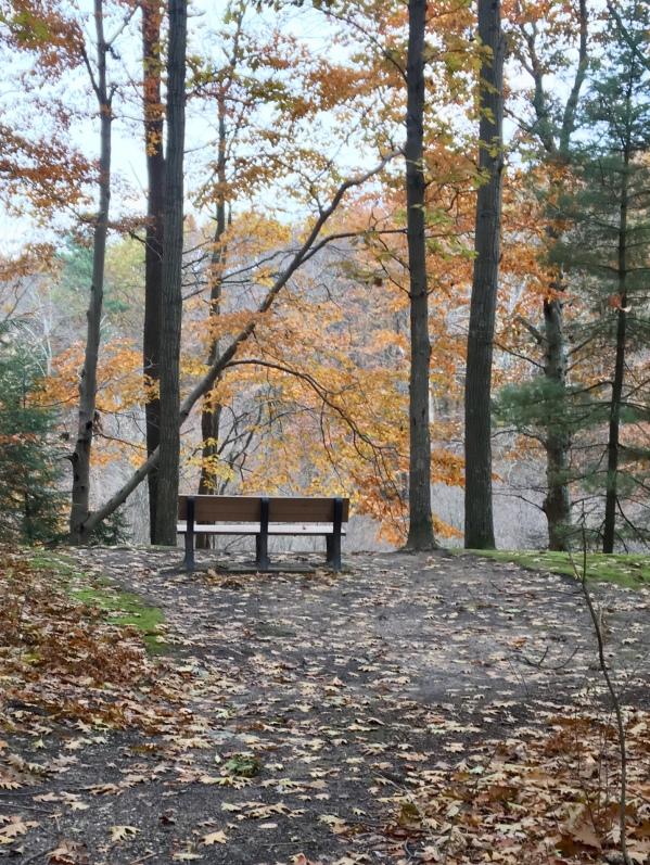 HOffmaster Park/fall/2017
