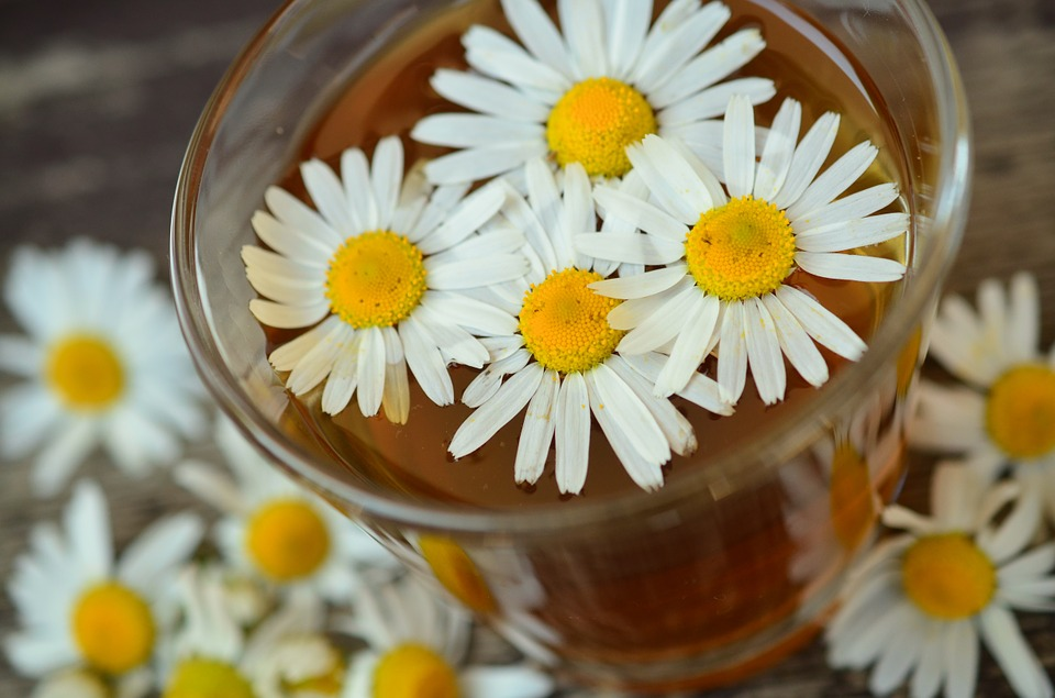 chamomile/faith/inspirational