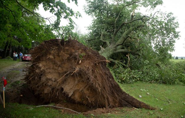 storm damage/inspirational