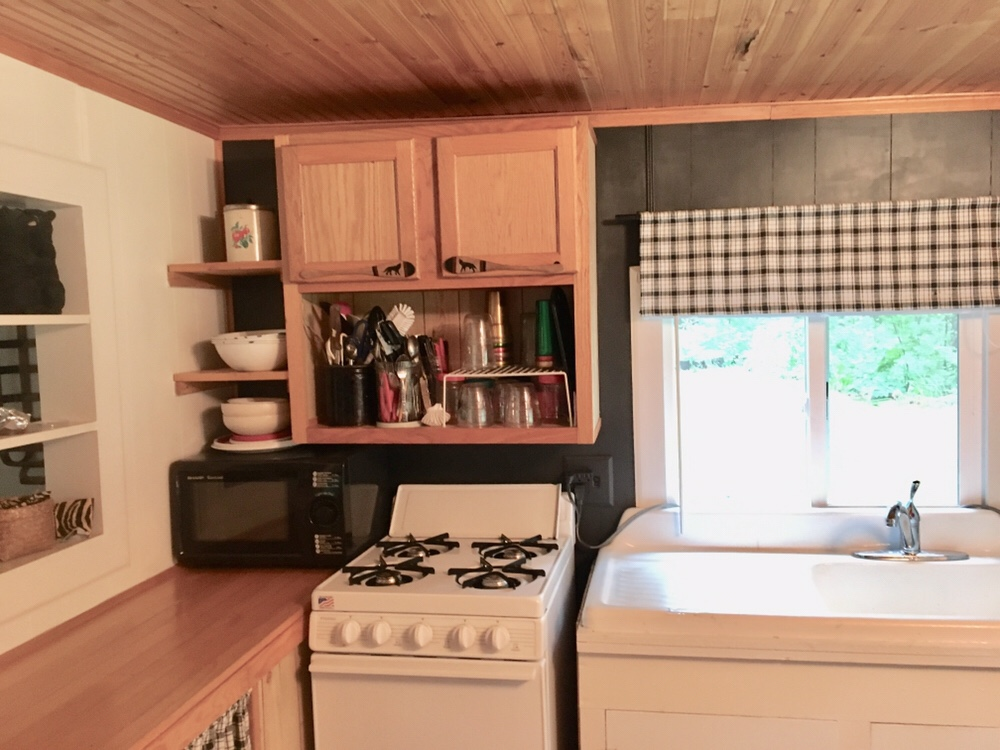 cabin kitchen/DIY