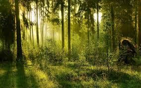 nature/inspirational/faith